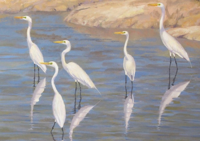 The Egrets and Mallows of Blackwater   , detail shot, by William R. Beebe