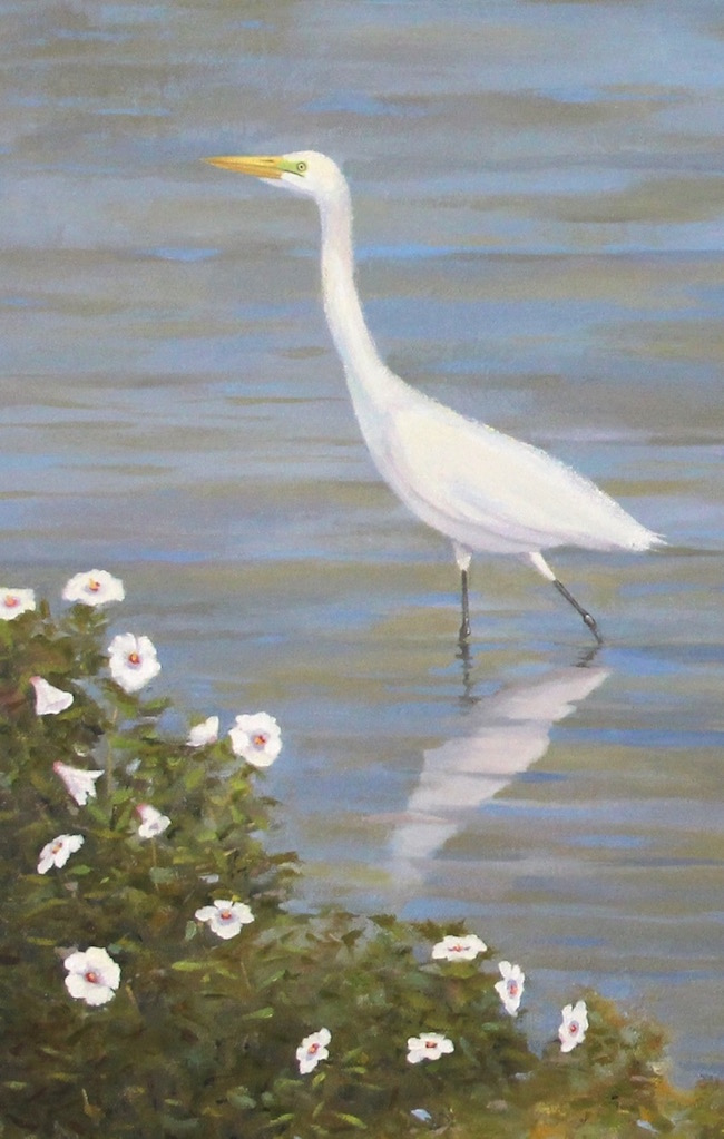 The Egrets and Mallows of Blackwater,    detail shot, by William R. Beebe