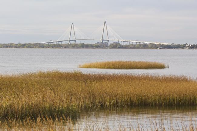 Distant view of the Arthur Ravenel Bridge!