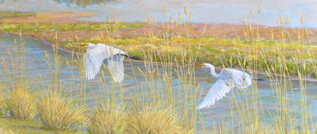 Tall Grasses on the Salt Marsh   by William R. Beebe, detail shot Great White Egrets