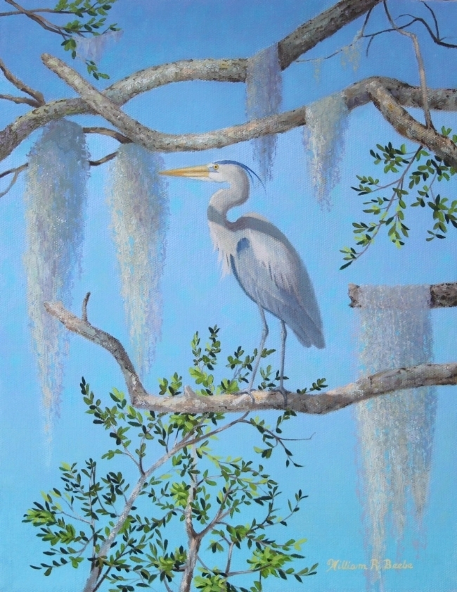 Lowcountry Heron    by William R. Beebe, 11 x 14, Oil on canvas, $1800