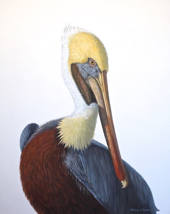 Striking a Pose   by William R. Beebe, 30 x 24, Oil on Canvas, Commissioned painting