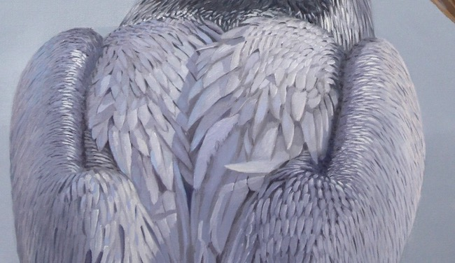 The Standout   by William R. Beebe, feather detail