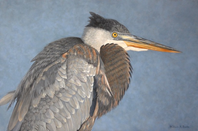 Junior Blue    by William R. Beebe, 24 x 36, Oil on canvas,  $7200
