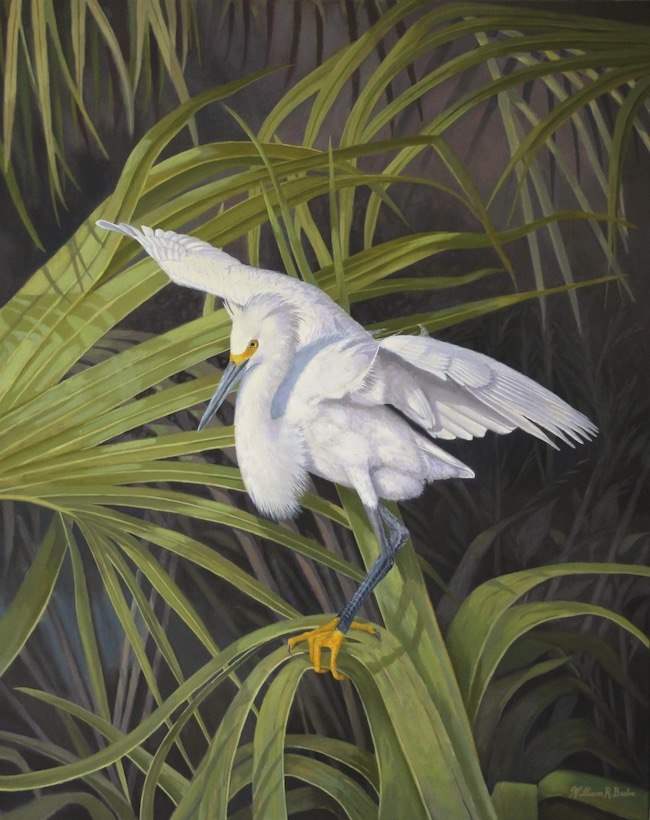 Snowy's Island Sanctuary    by William R. Beebe, 30 x 24, Oil on Linen, $6200