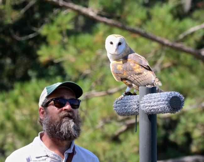Stephen Schabel, Master bird handler!