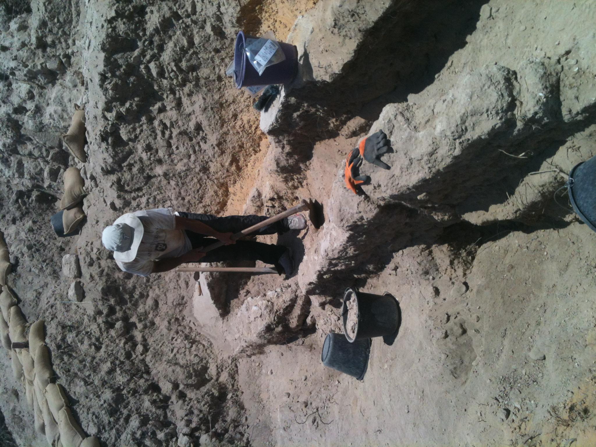 Grid 16 volunteer excavating sewer