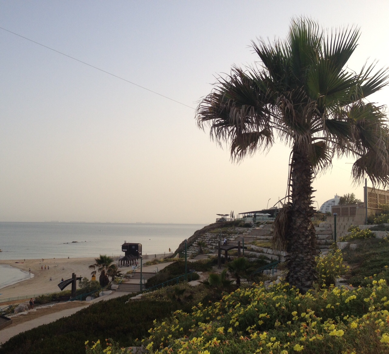 The Ashkelon beach