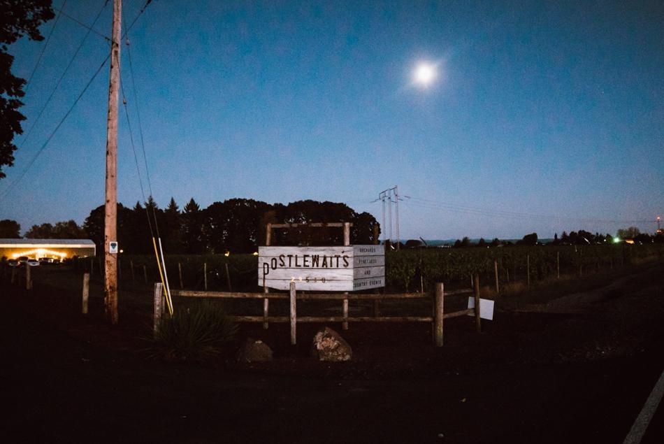 BrieMullin_PortlandPhotographer_0919.jpg