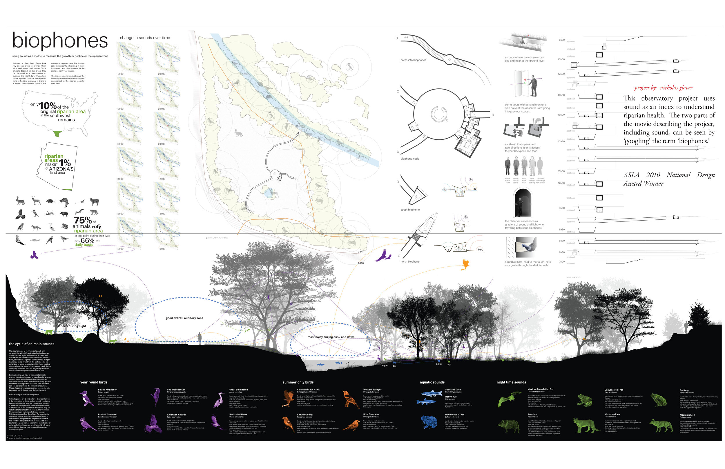 Project presentation board noting sound analysis and consequent locations of each species.