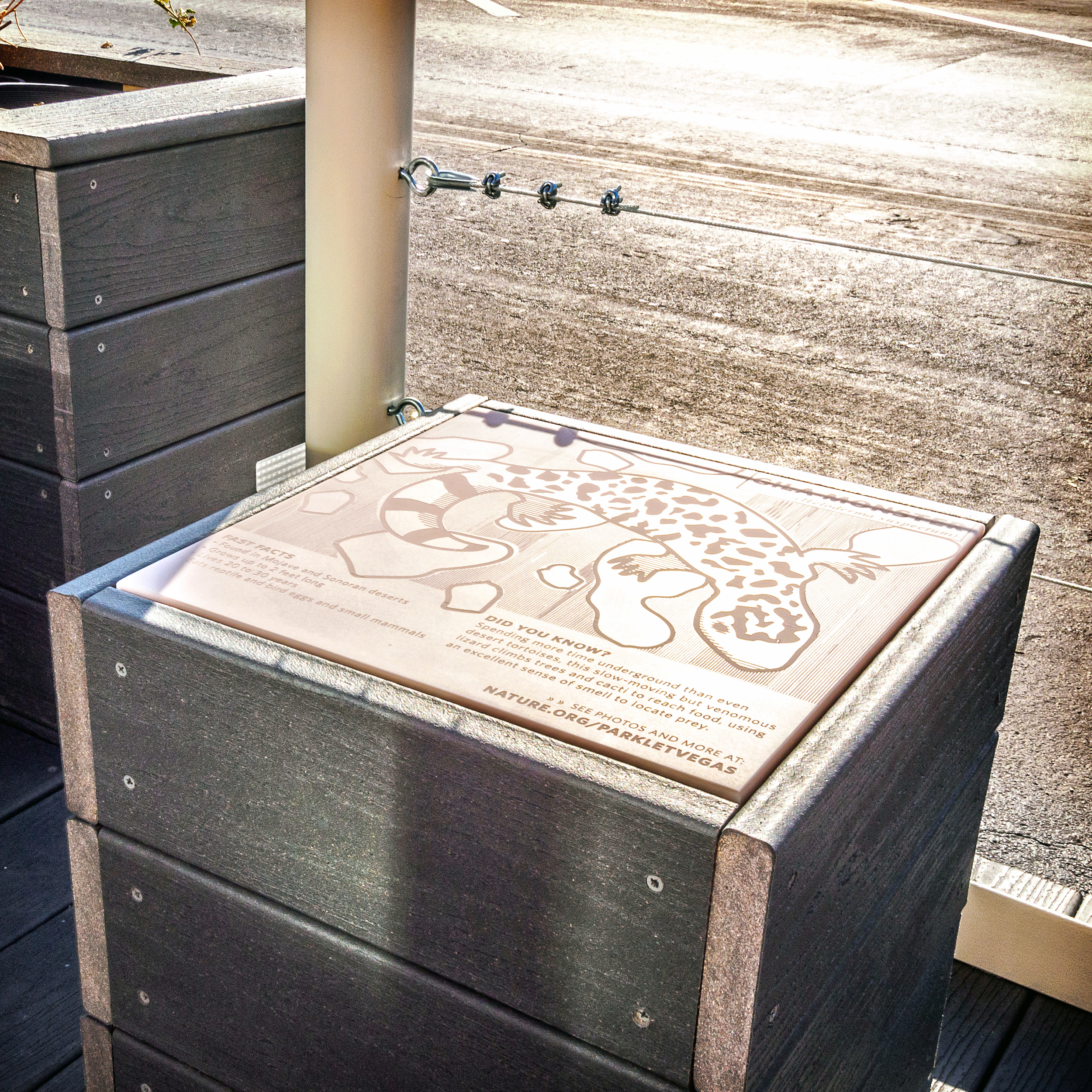 The seats each have signature species of the Mojave Desert laser cut into them.
