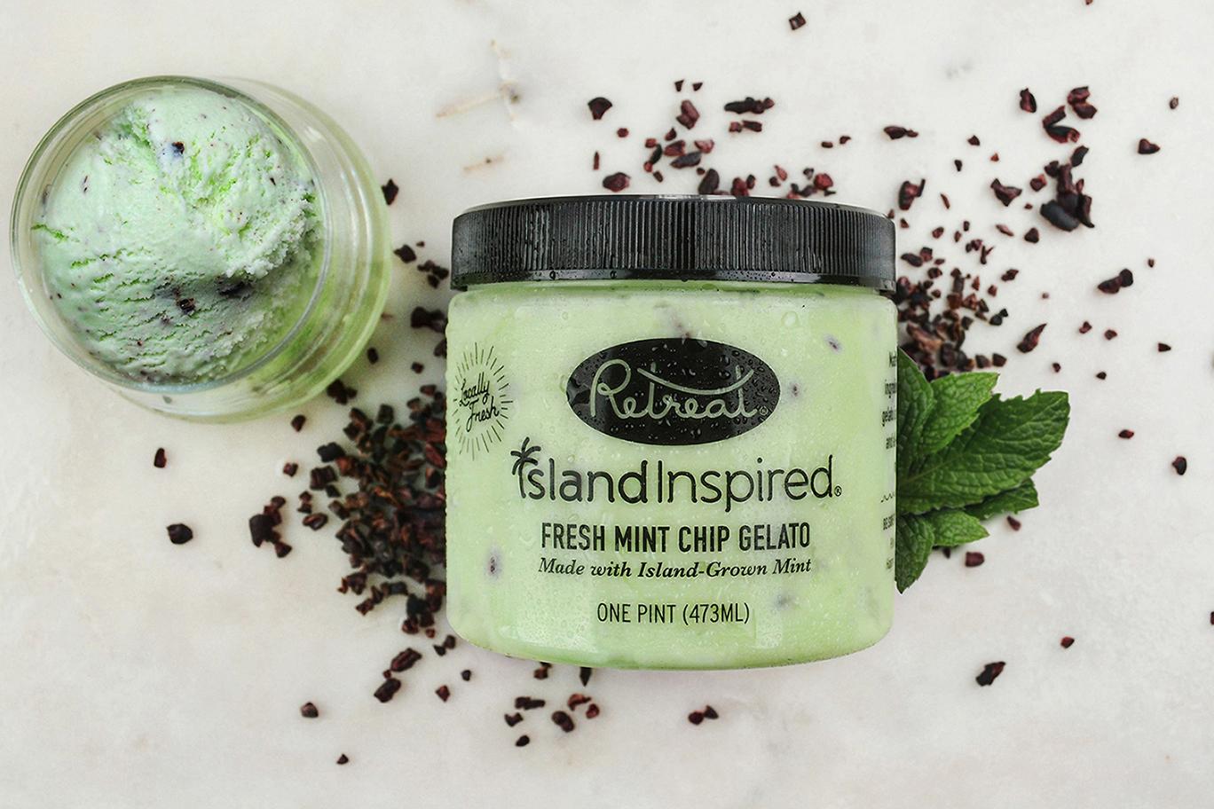 Island Inspired  Fresh Mint Chip Gelato