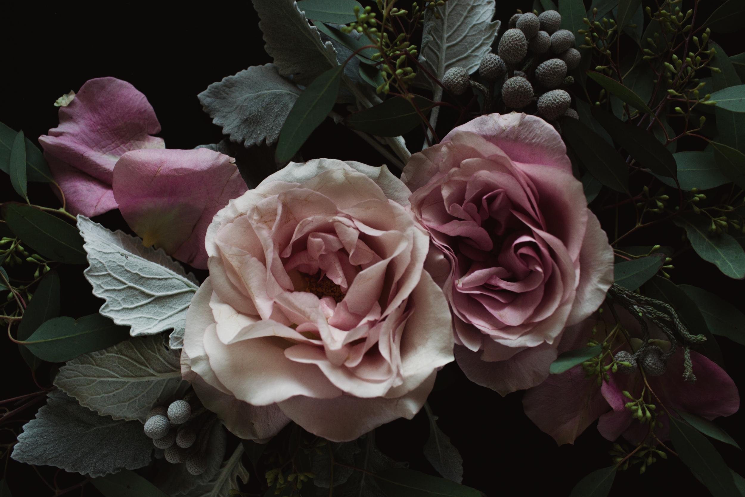 floralstill_1213-2.jpg