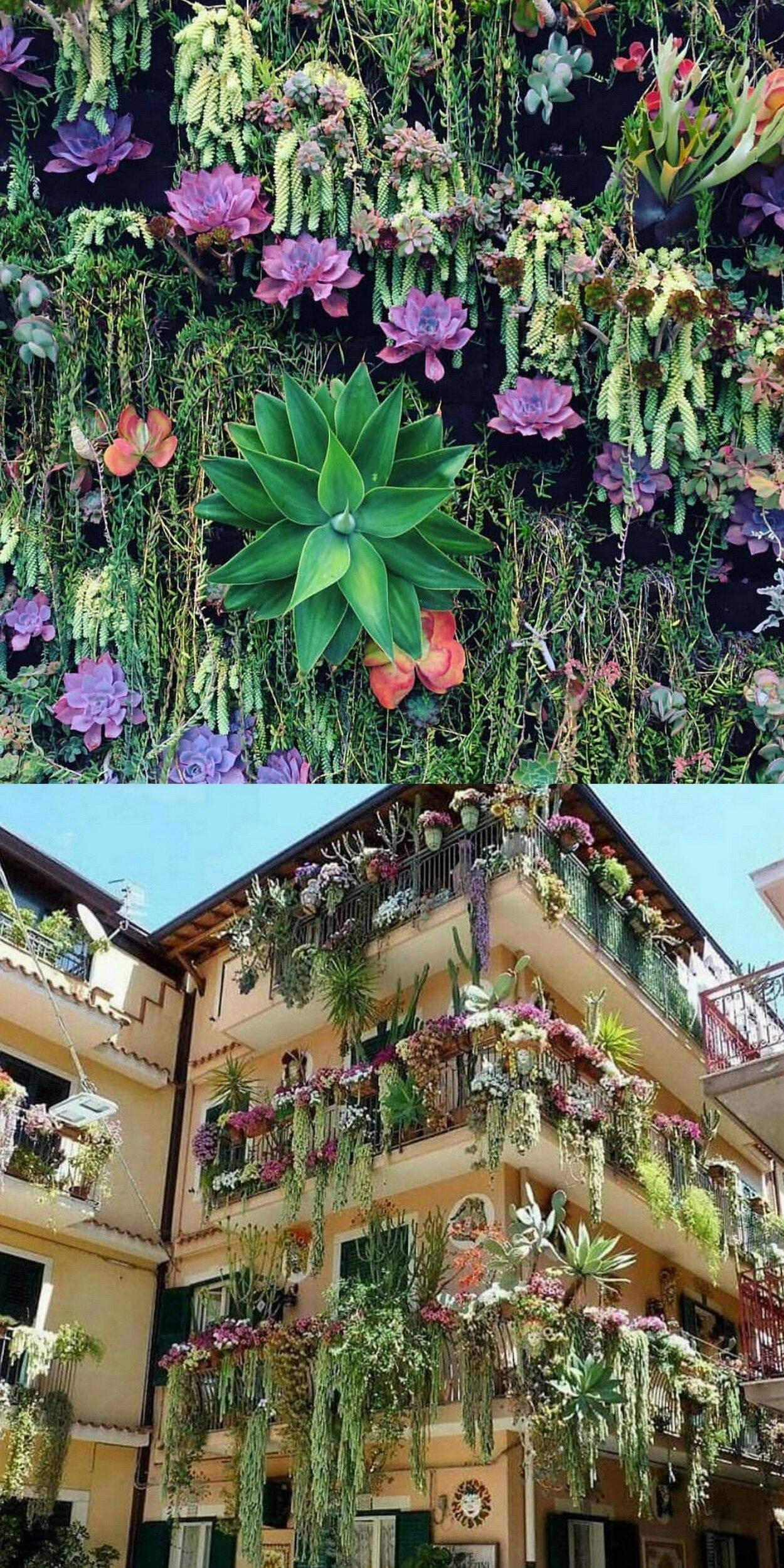 Stunning Succulent Gardens @fairyblooms