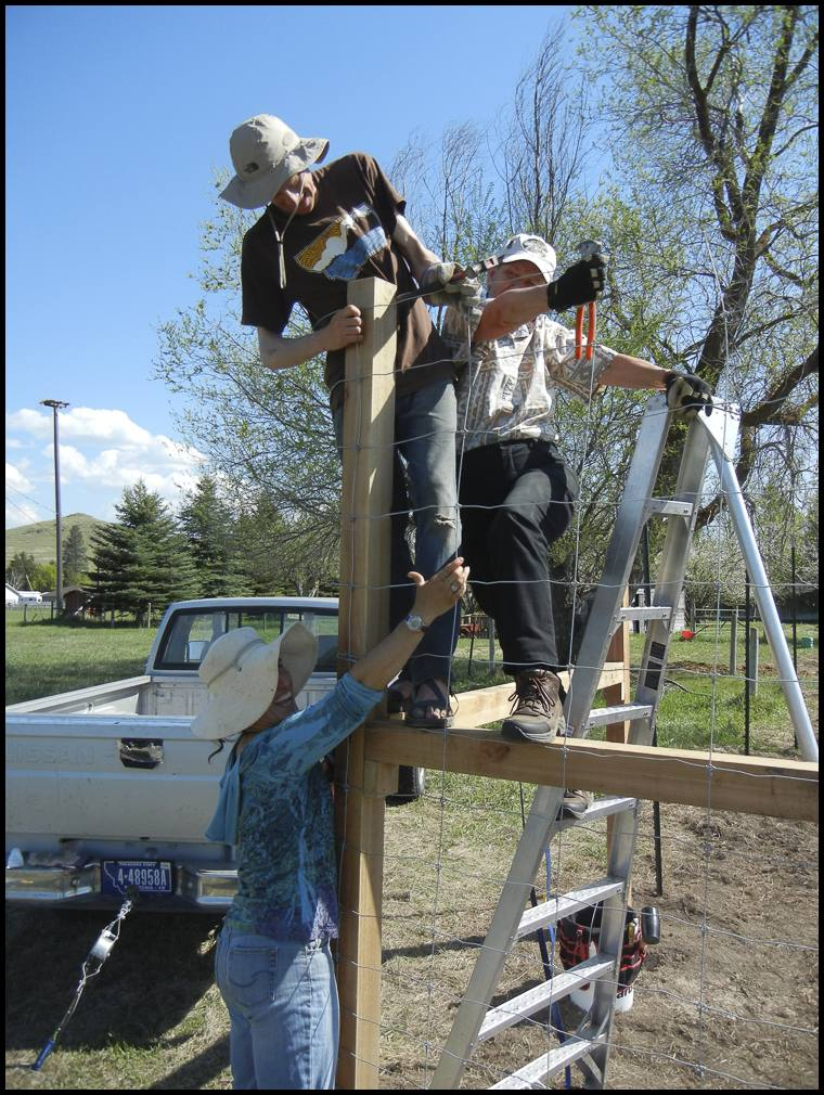 Installing our eight foot high deer fence with mentors Sharon and Pat Sweeny.