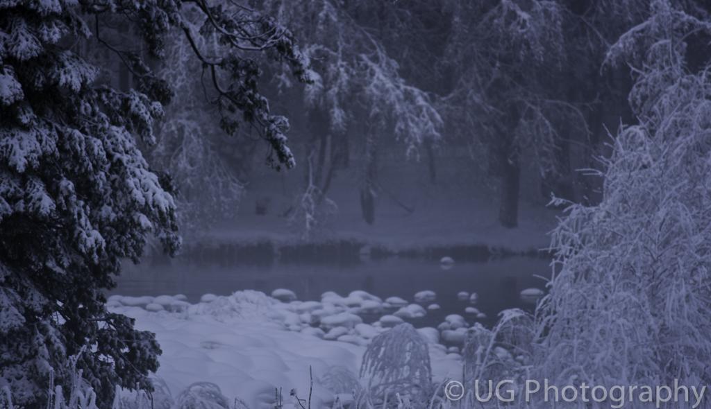 Yosemite 035.jpg