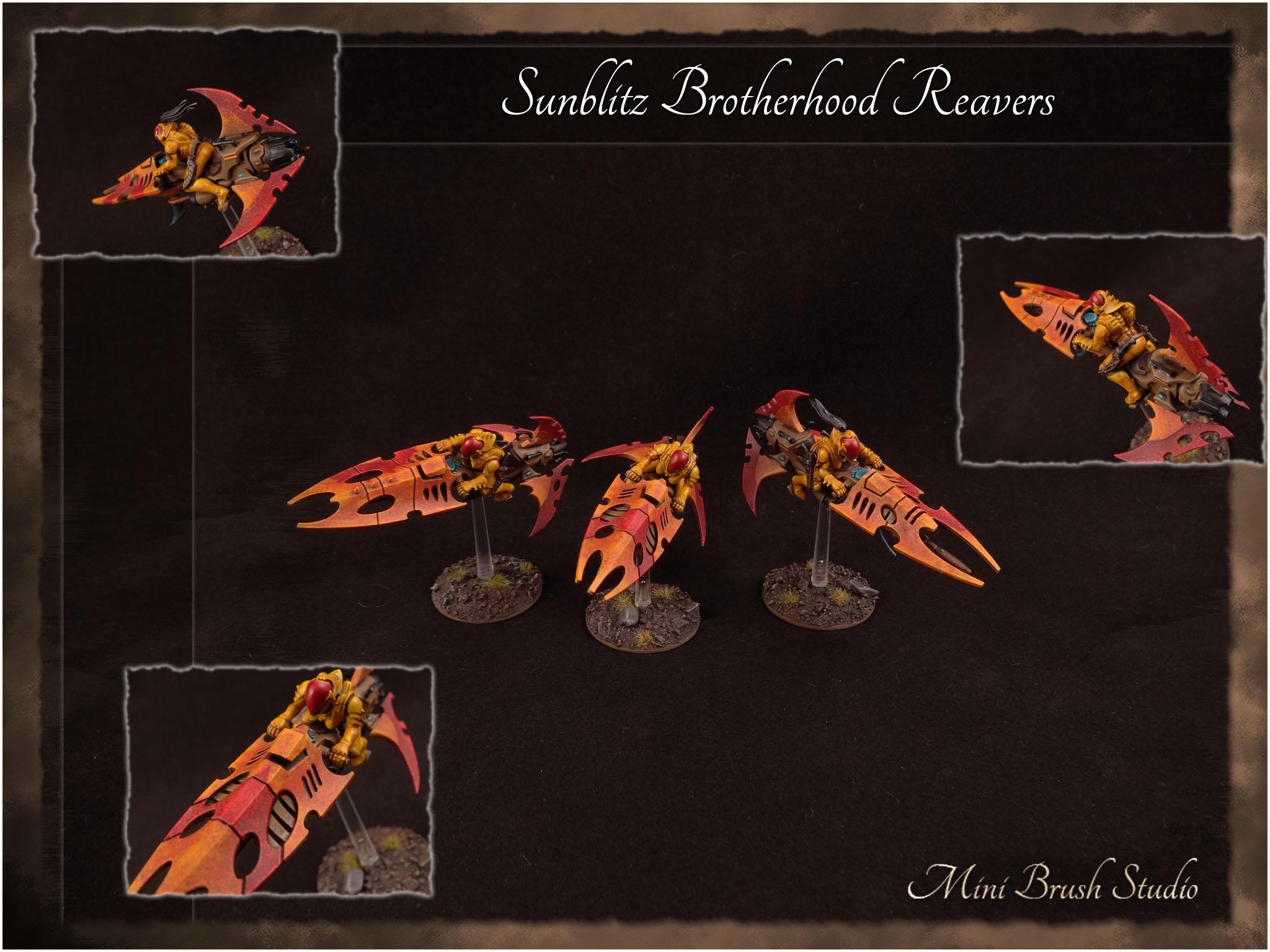 Reavers 1 ( Sunblitz Brotherhood ) v7.jpg