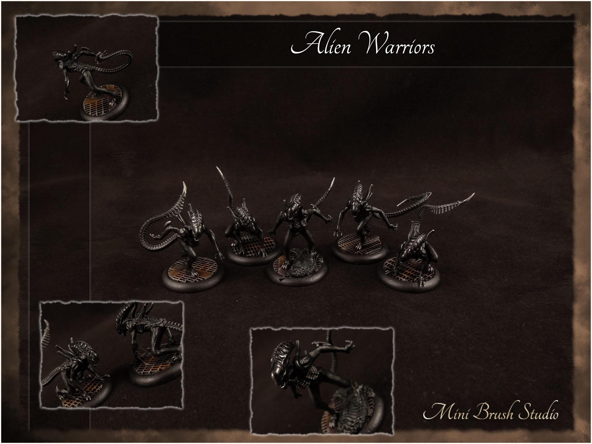 Alien Warriors 1 v7.jpg