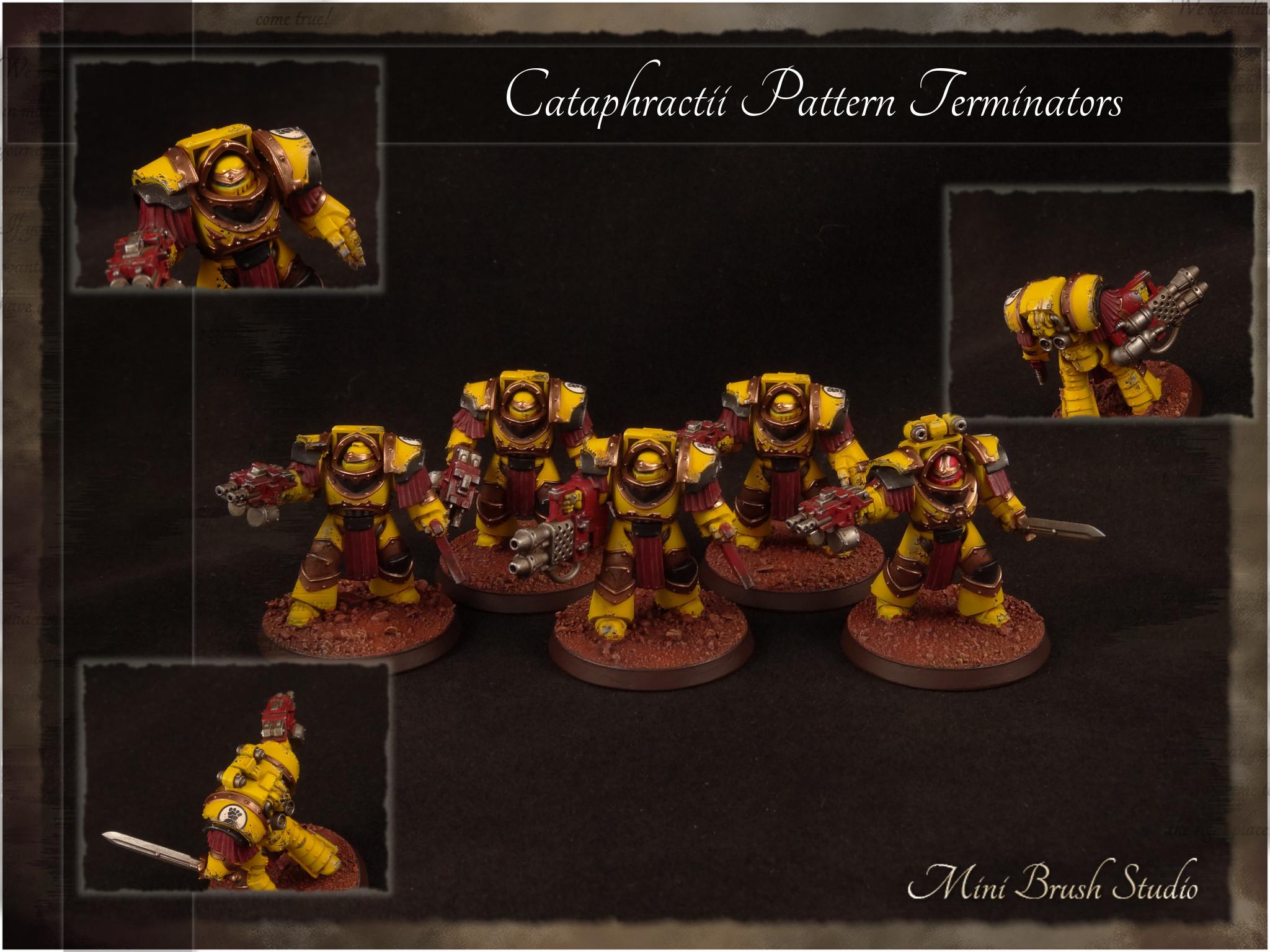 Cataphractii Pattern Terminators 5 ( Imperial Fists ).jpg