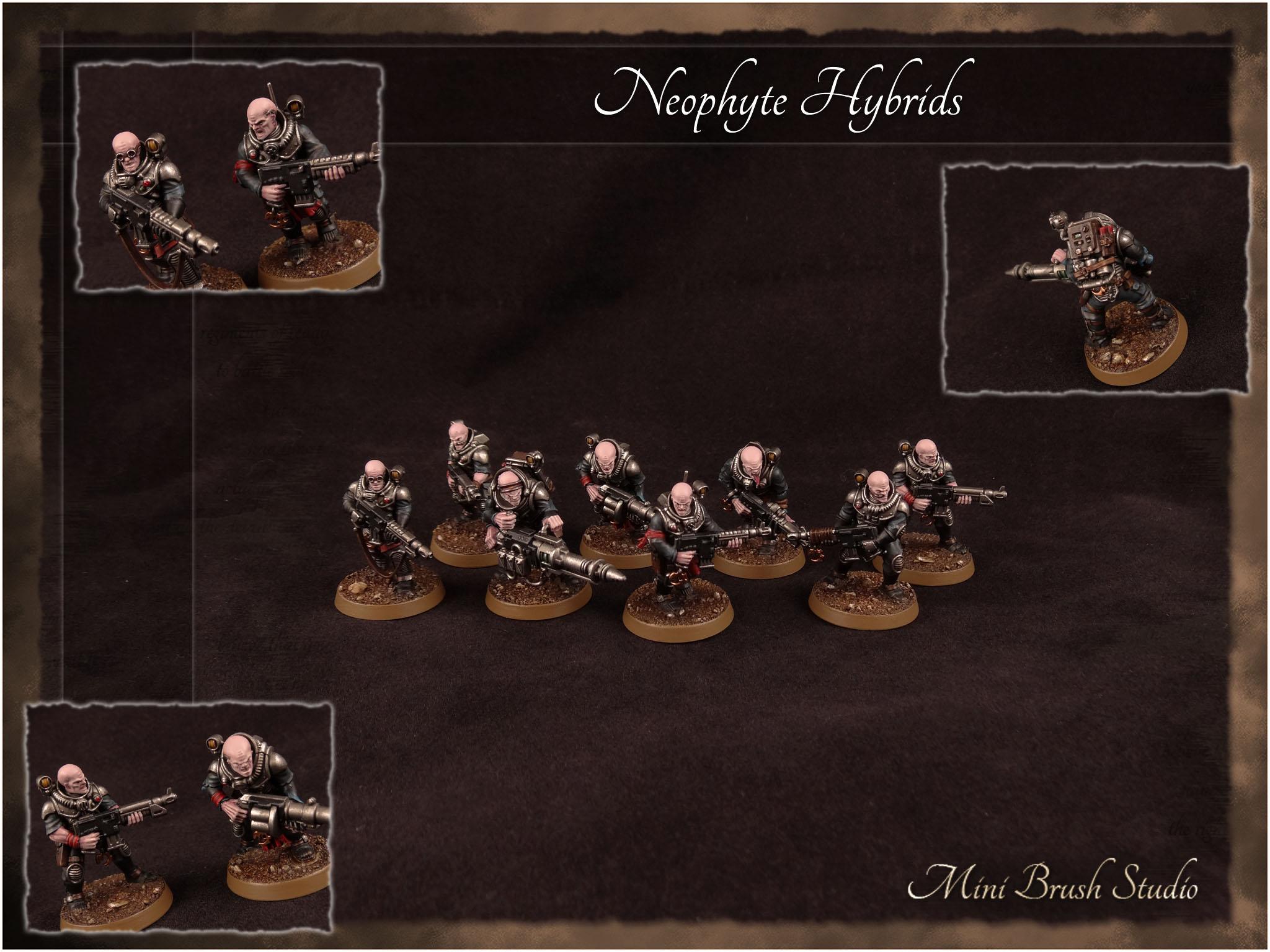 Neophyte Hybrids 1 v7.jpg
