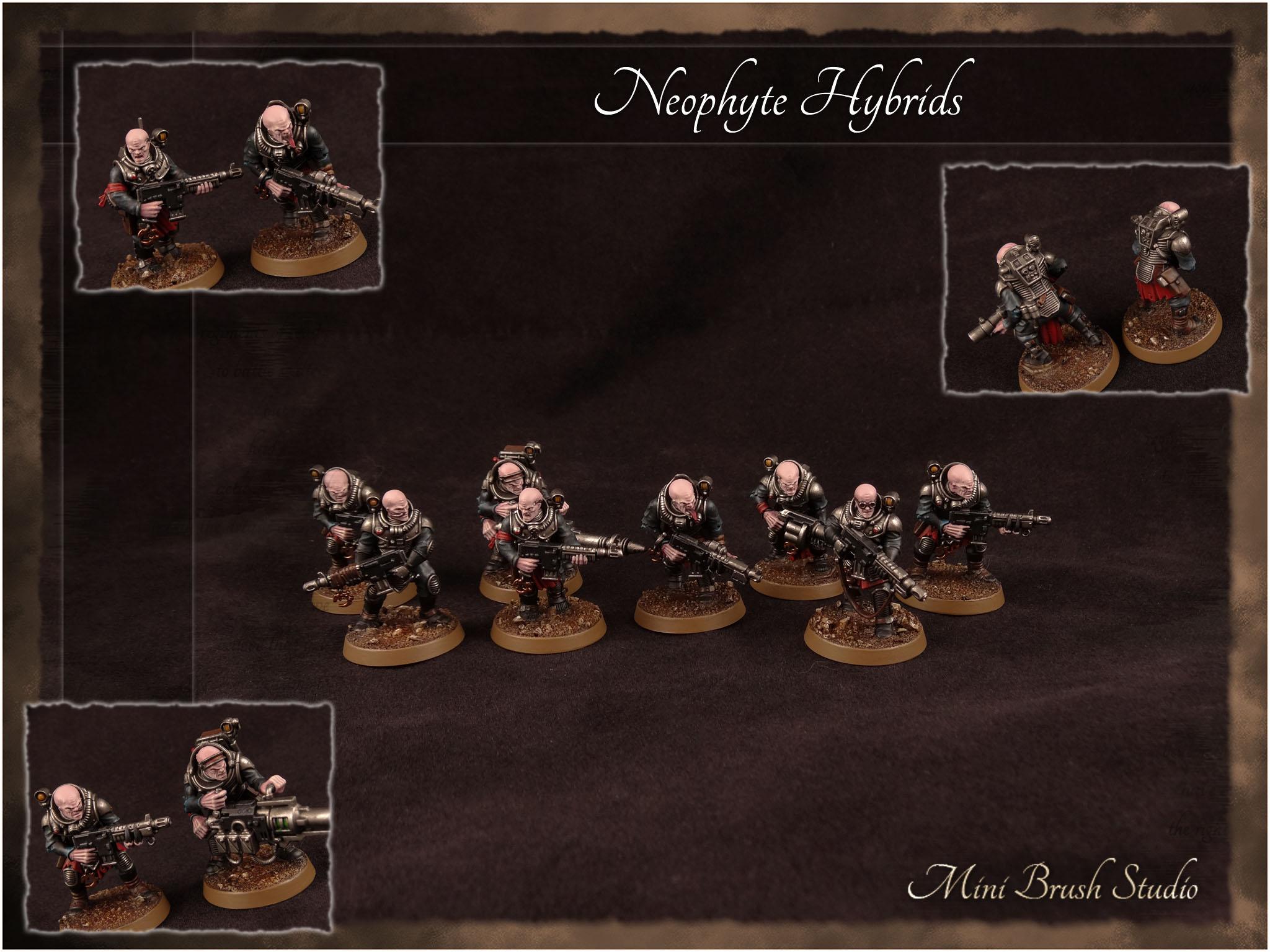 Neophyte Hybrids 2 v7.jpg