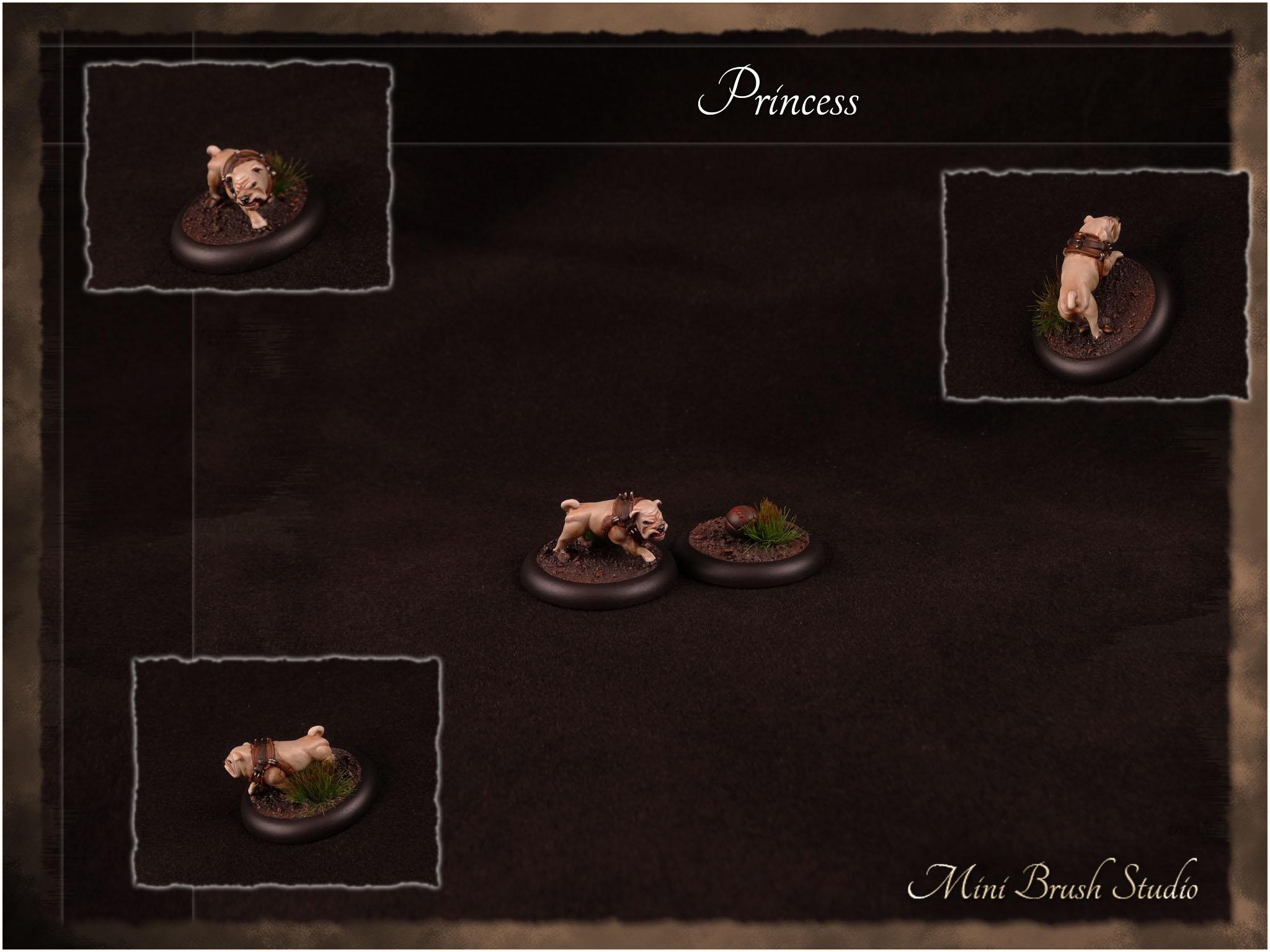 Princess ( Butchers Guild ) 1 v7.jpg