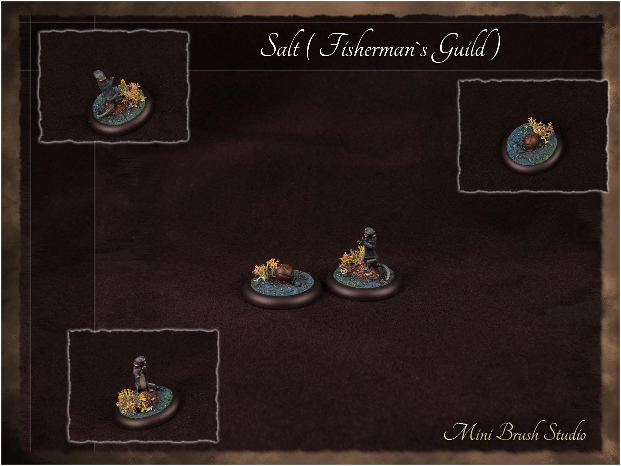 Salt ( Fishermans Guild ) 1 v7.jpg