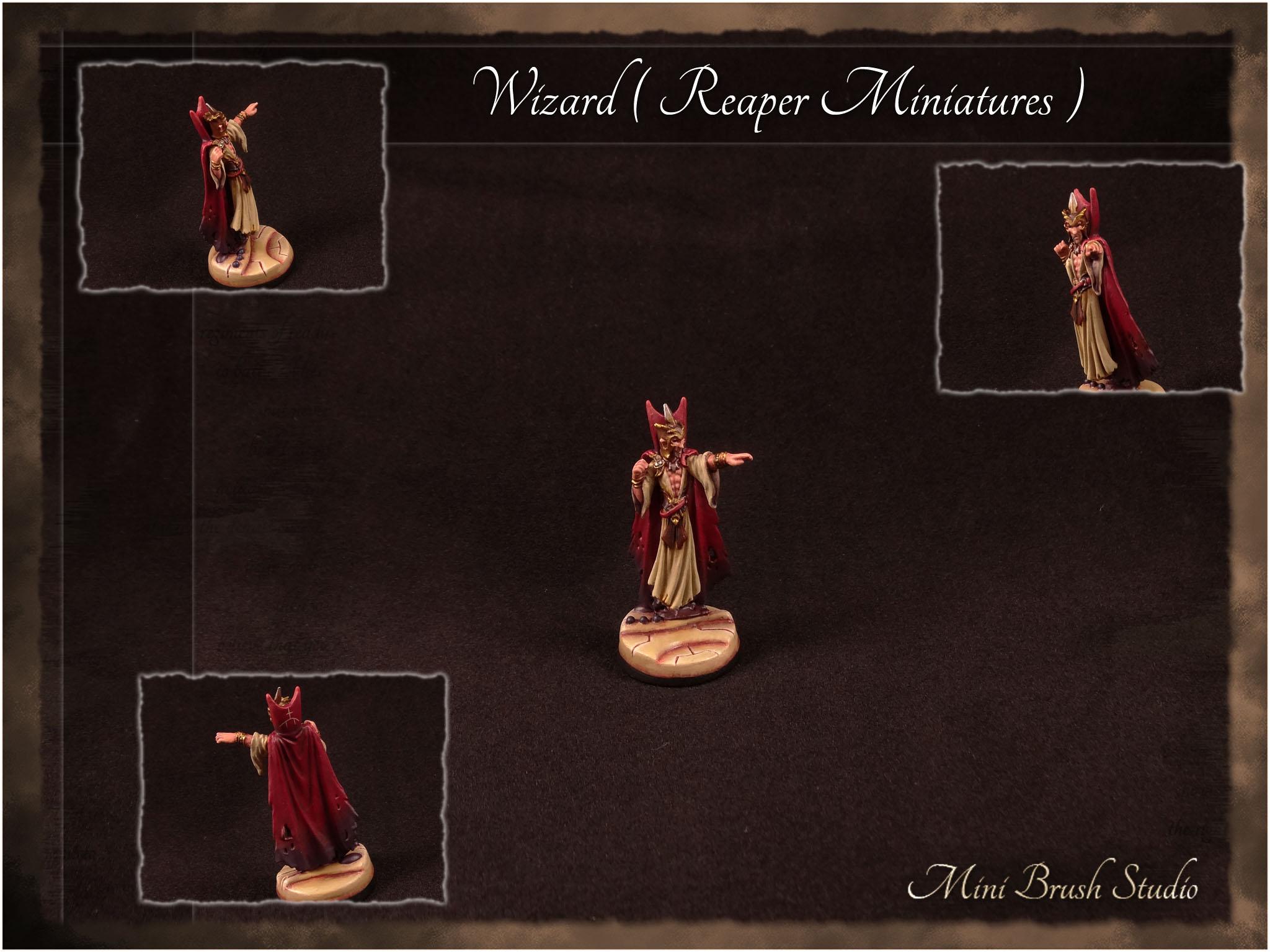 Wizard ( Reaper Miniatures ) 1 v7.00.jpg