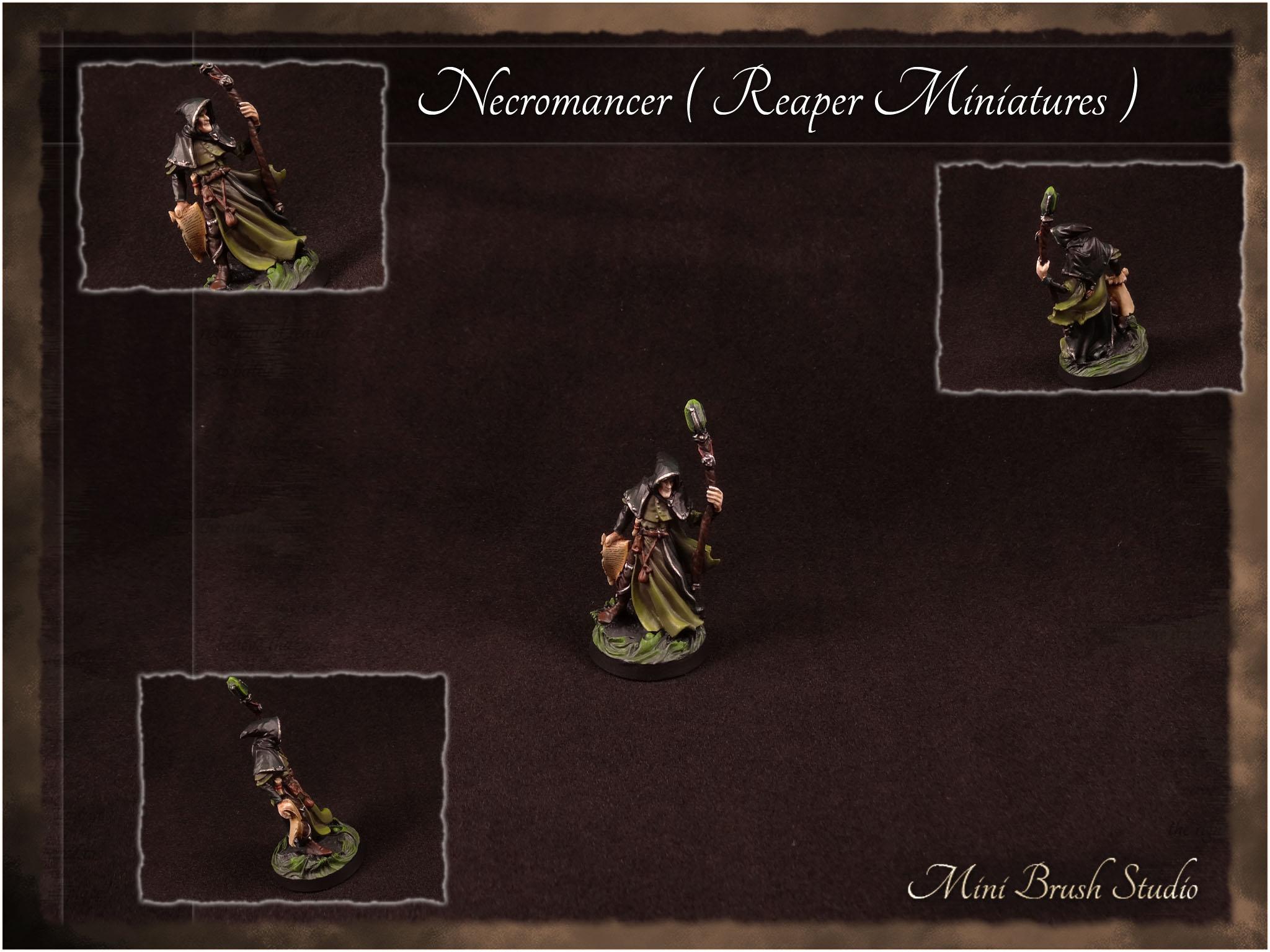 Necromancer ( Reaper Miniatures ) 1 v7.00.jpg