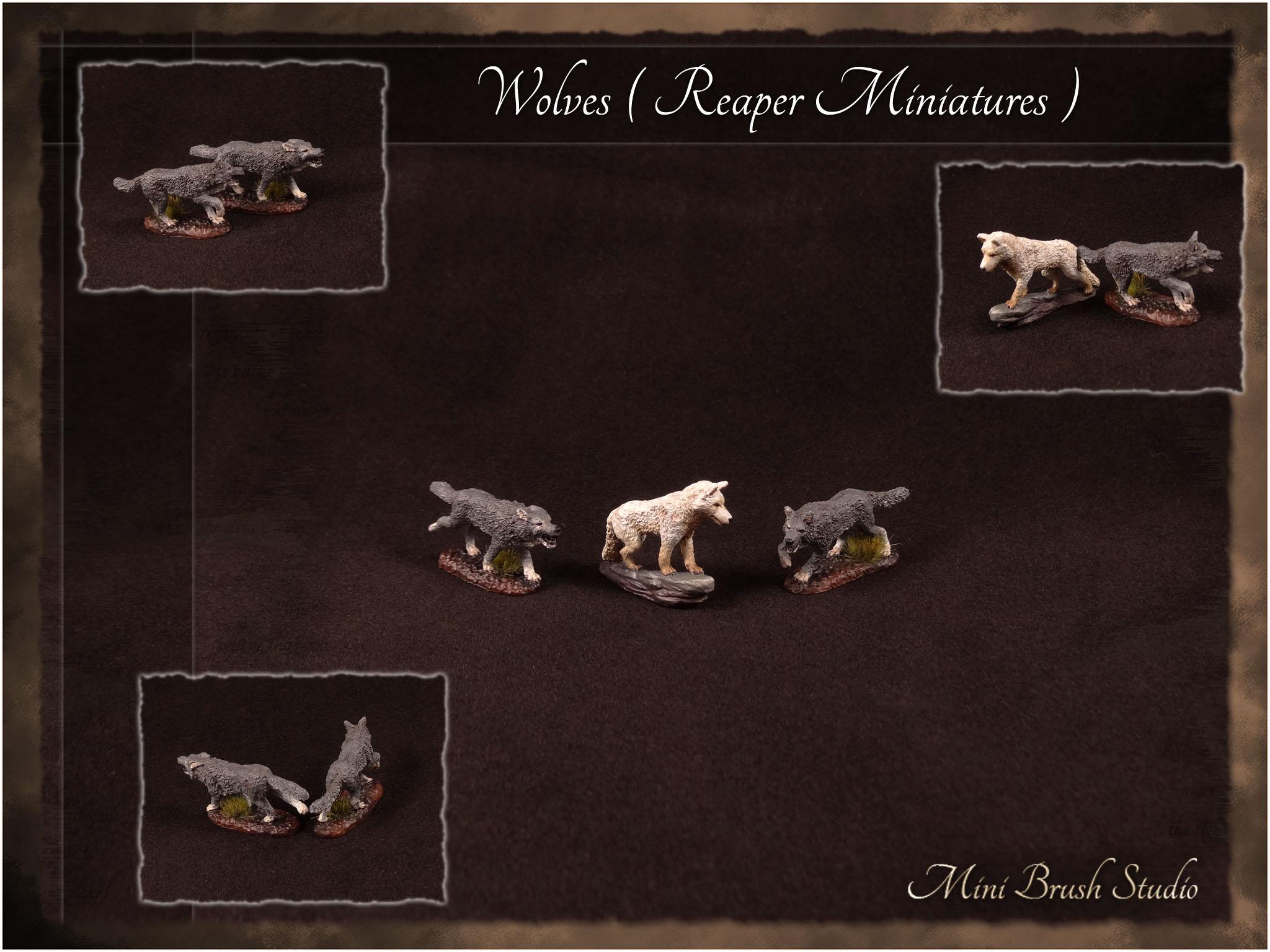 Wolves ( Reaper Miniatures ) 1 v7.00.jpg