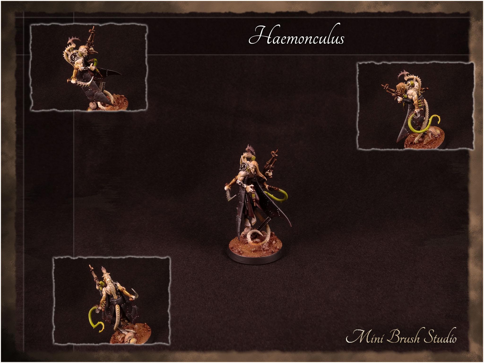 Haemonculus - Dark Eldar ( Drukhari ) 1 v7.00.jpg