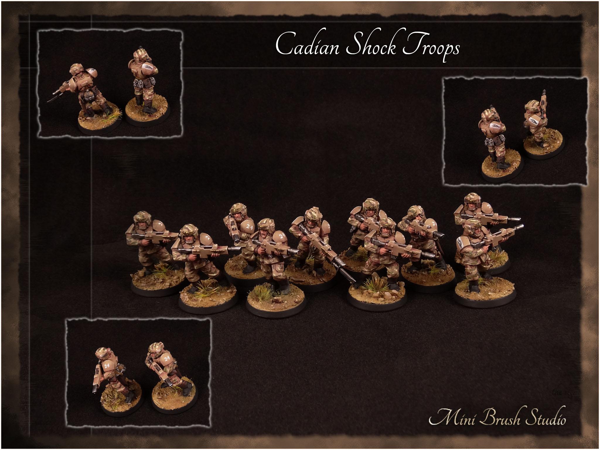 Cadian Shock Troops 1 v7.00.jpg
