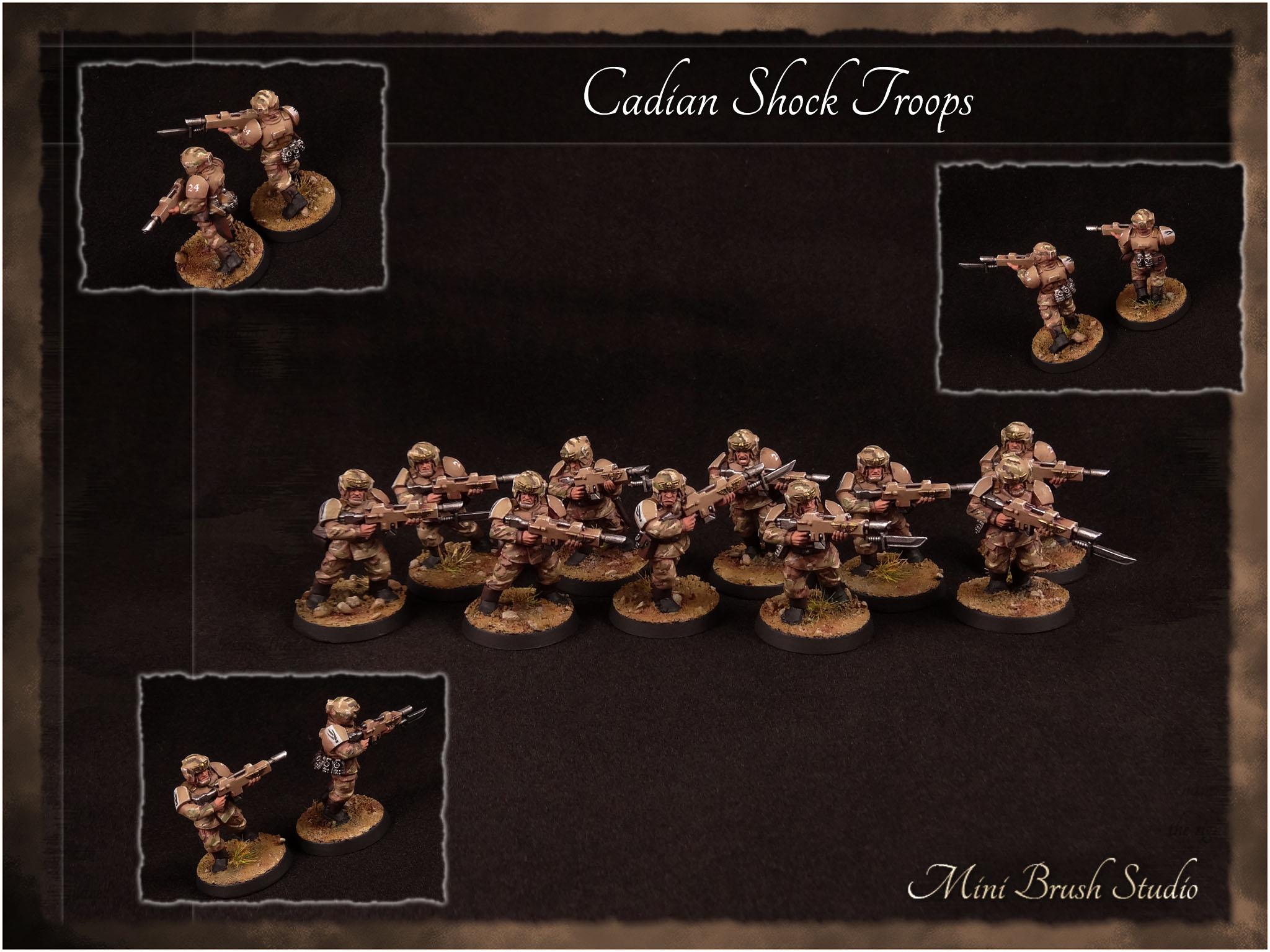 Cadian Shock Troops 2 v7.00.jpg