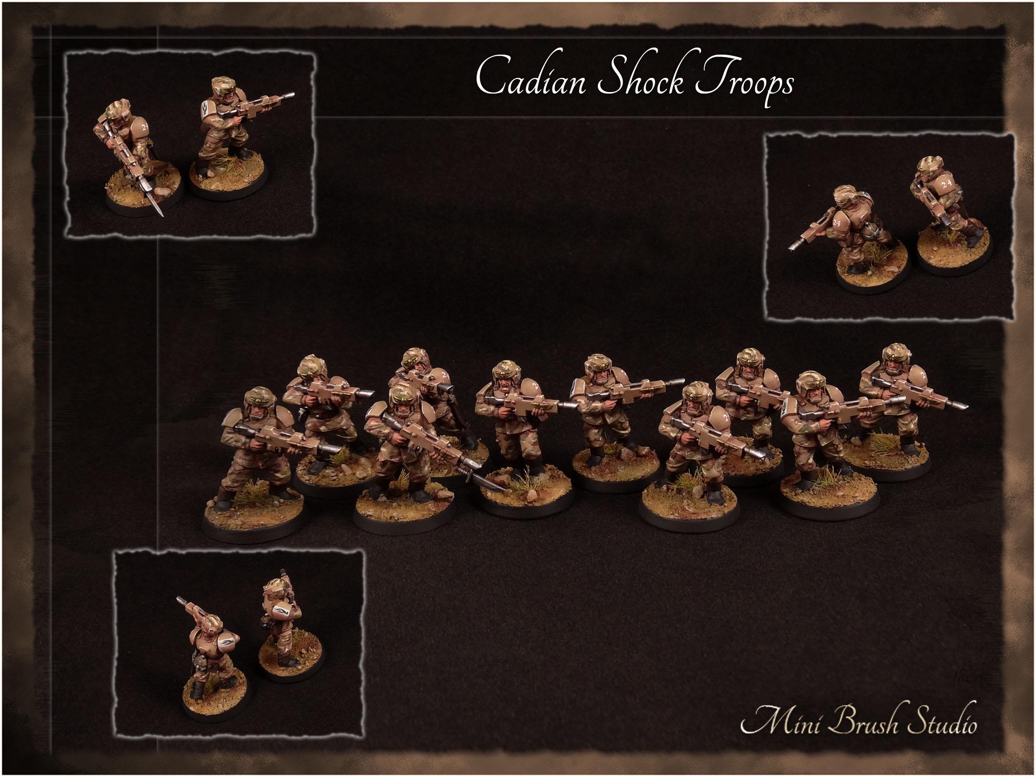 Cadian Shock Troops 4 v7.00.jpg
