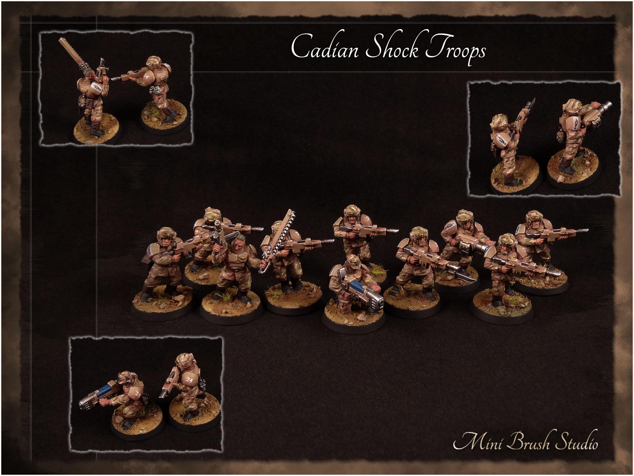 Cadian Shock Troops 7 v7.00.jpg