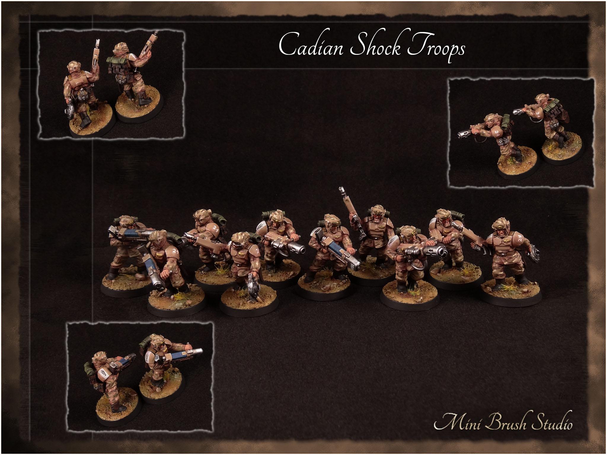 Cadian Shock Troops 9 v7.00.jpg