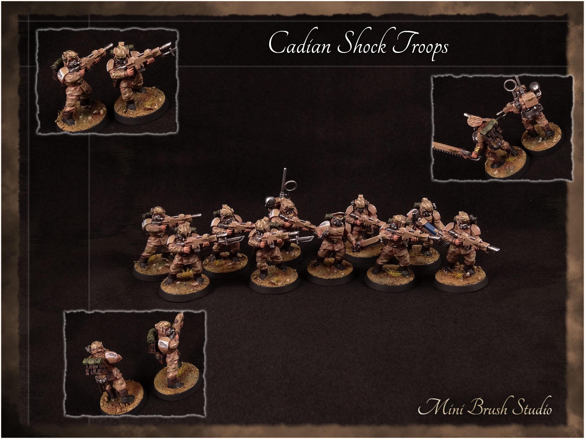 Cadian Shock Troops 8 v7.00.jpg