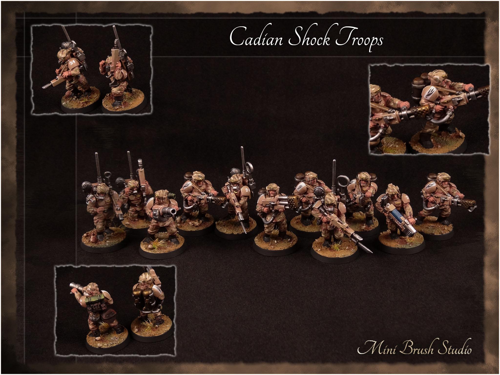 Cadian Shock Troops 11 v7.00.jpg