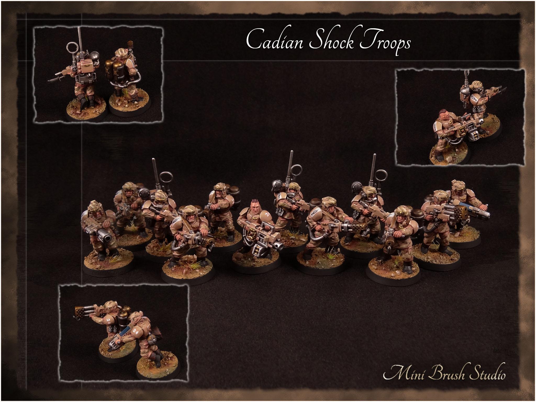 Cadian Shock Troops 10 v7.00.jpg