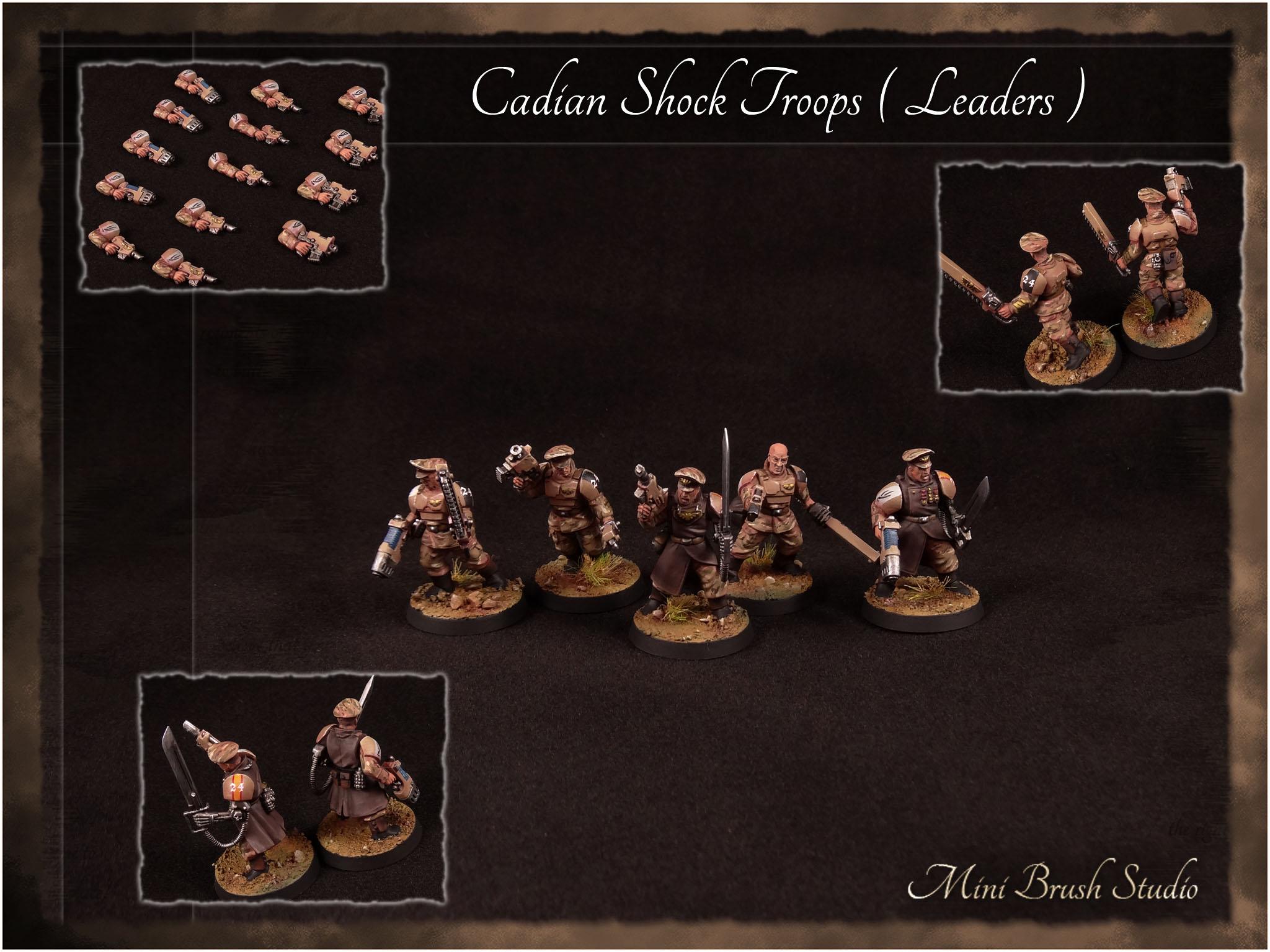 Cadian Shock Troops - Leaders 12 v7.00.jpg