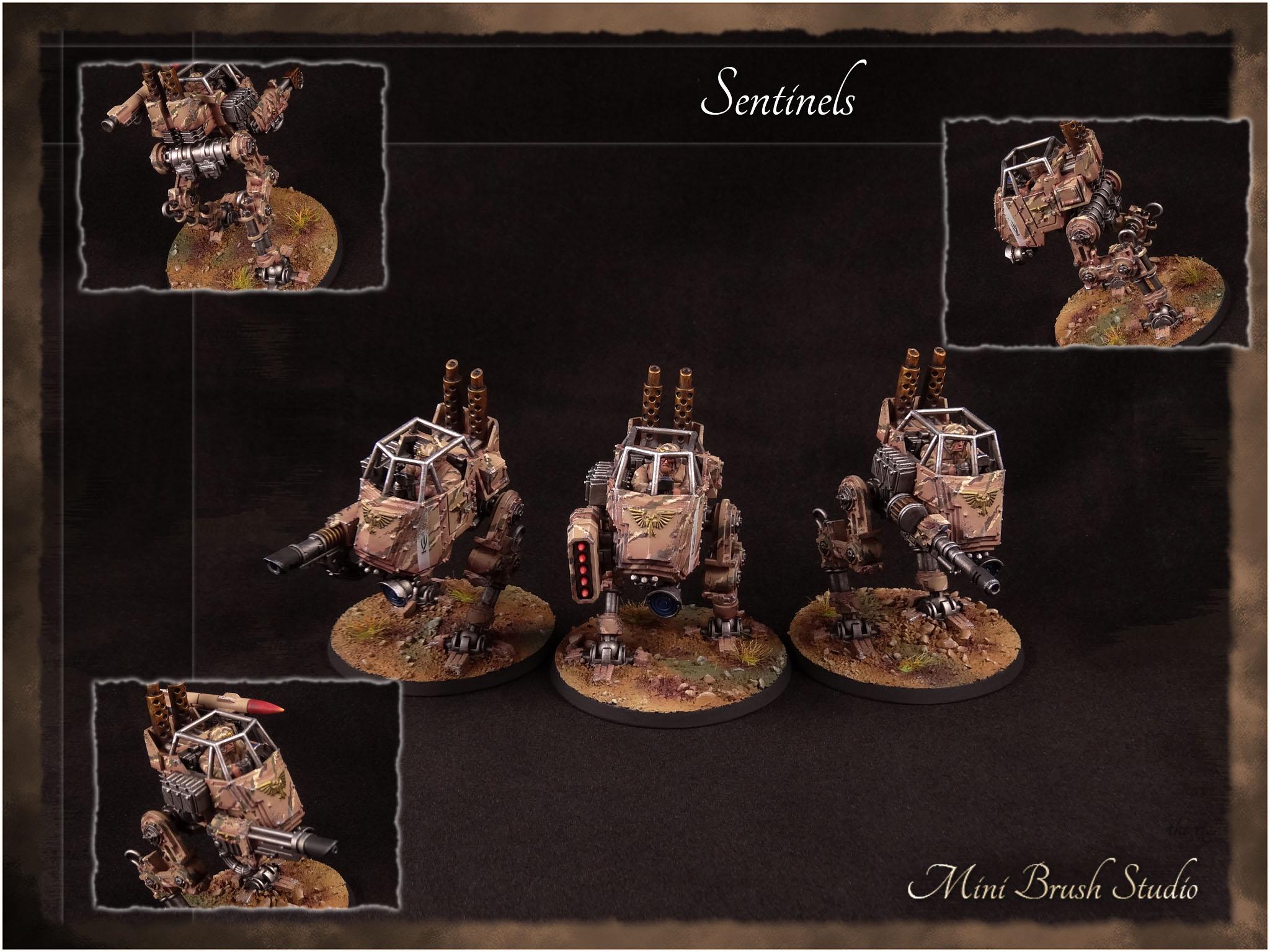 Sentinels 1 v7.00.jpg