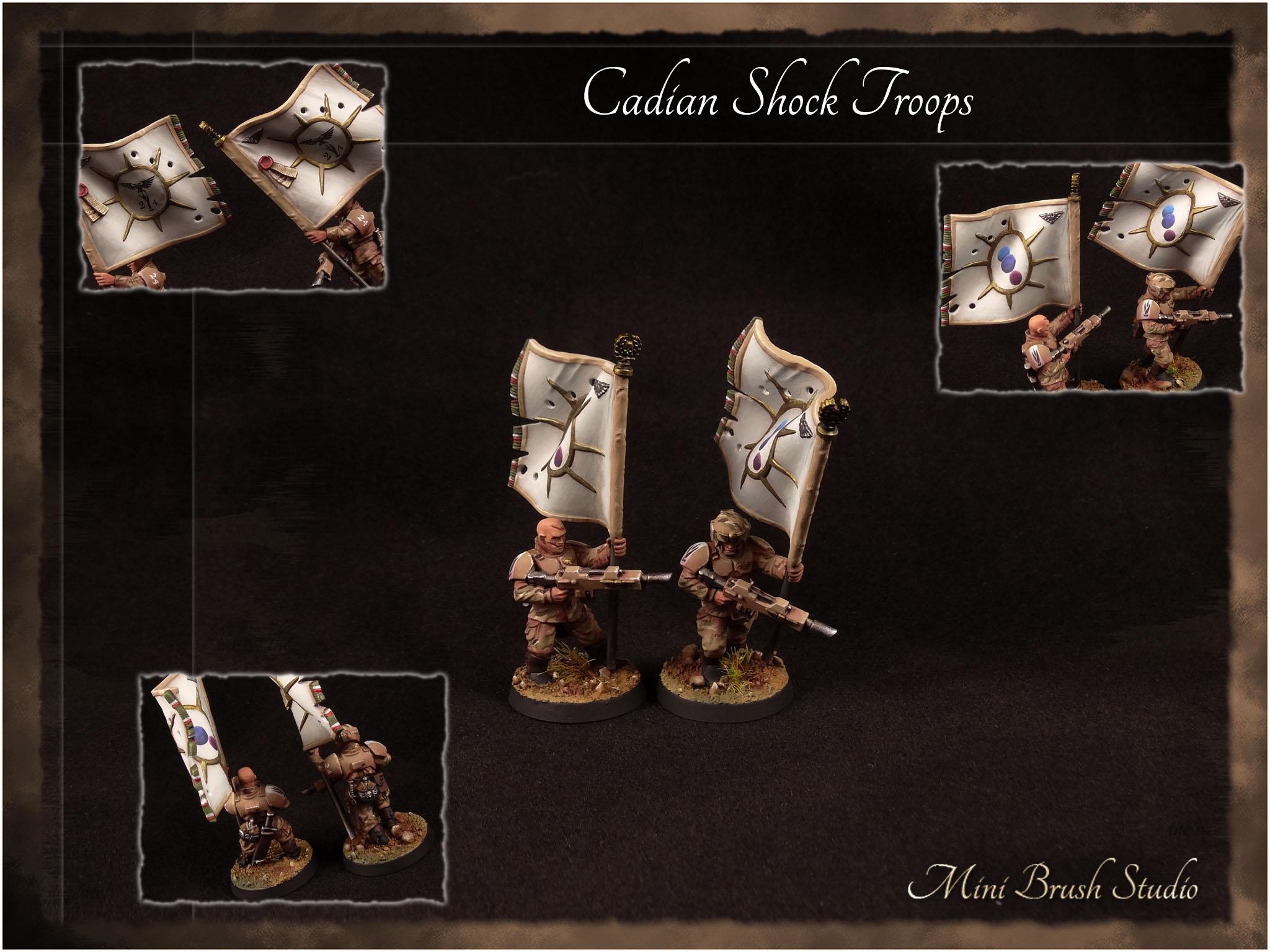 Cadian Shock Troops 12 v7.00.jpg