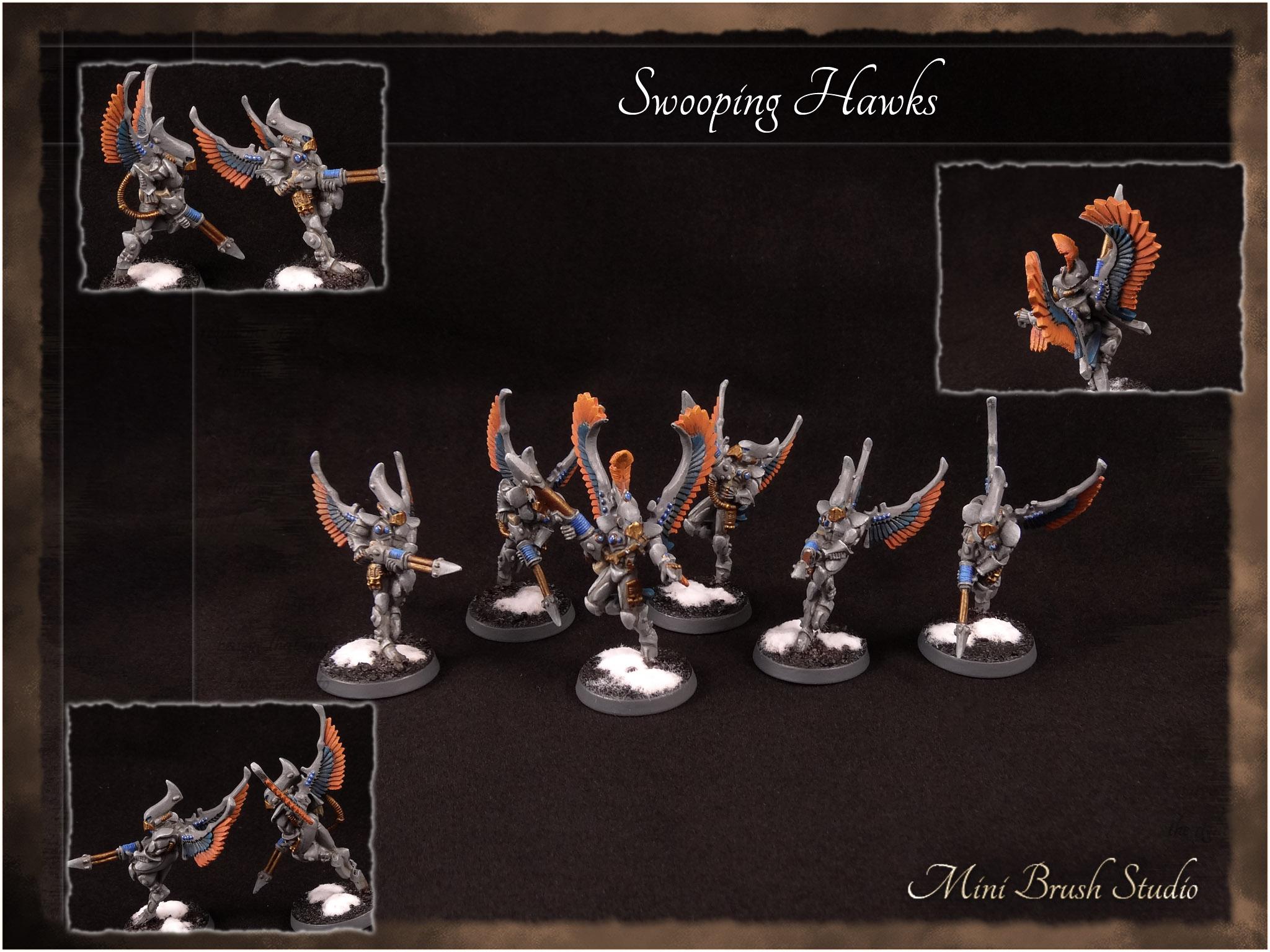 Swooping Hawks 1 v7.00.jpg