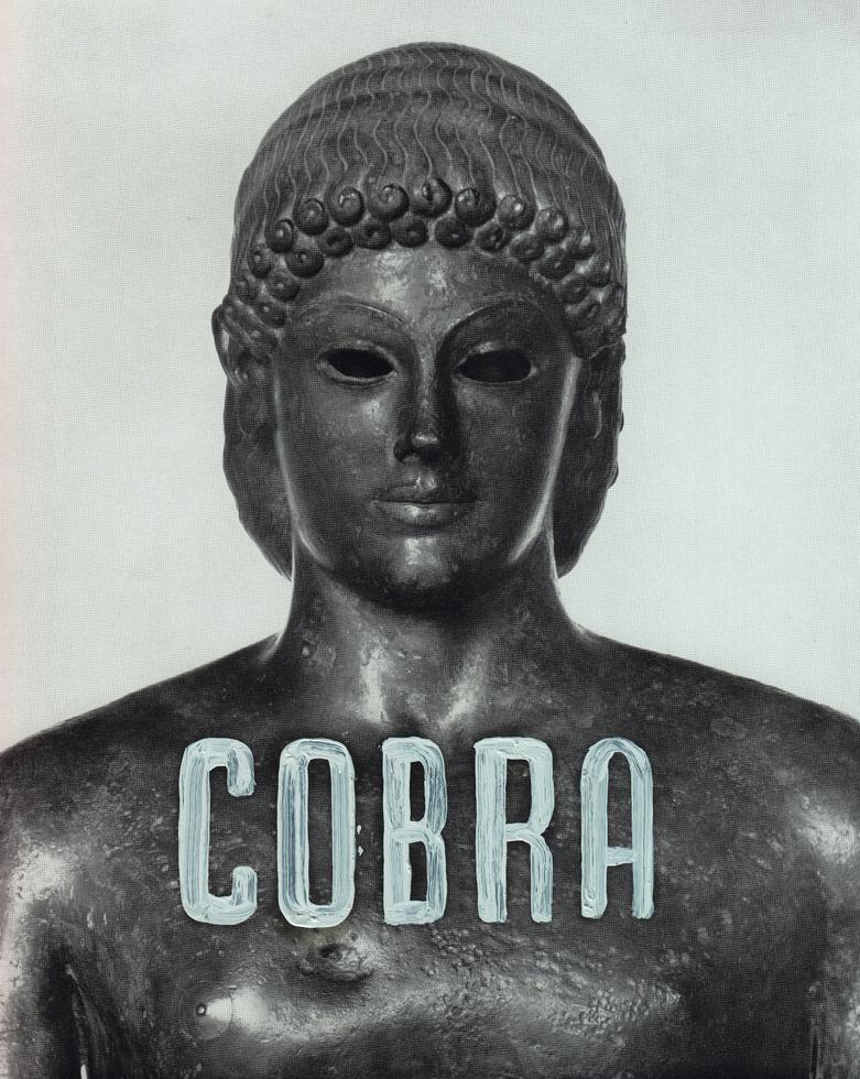 Missiles of the world Cobra sml.jpg