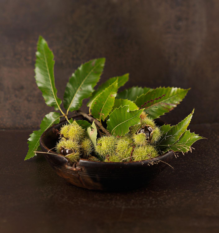Food Photography Photographer London UK Chestnuts