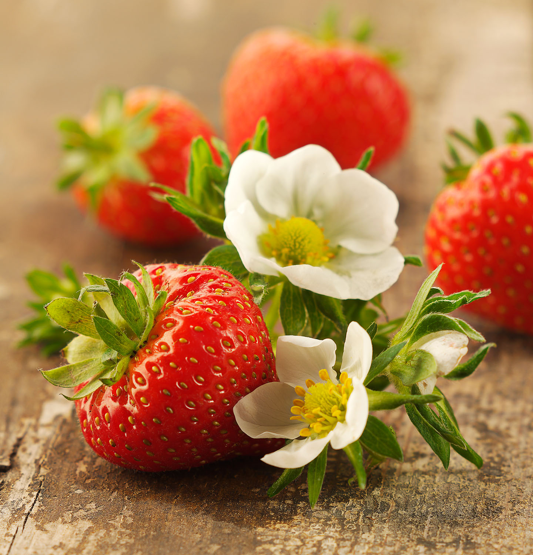 Food Photography Photographer London UK Strawberry