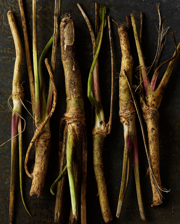 Food Photography Photographer London UK Horseradish