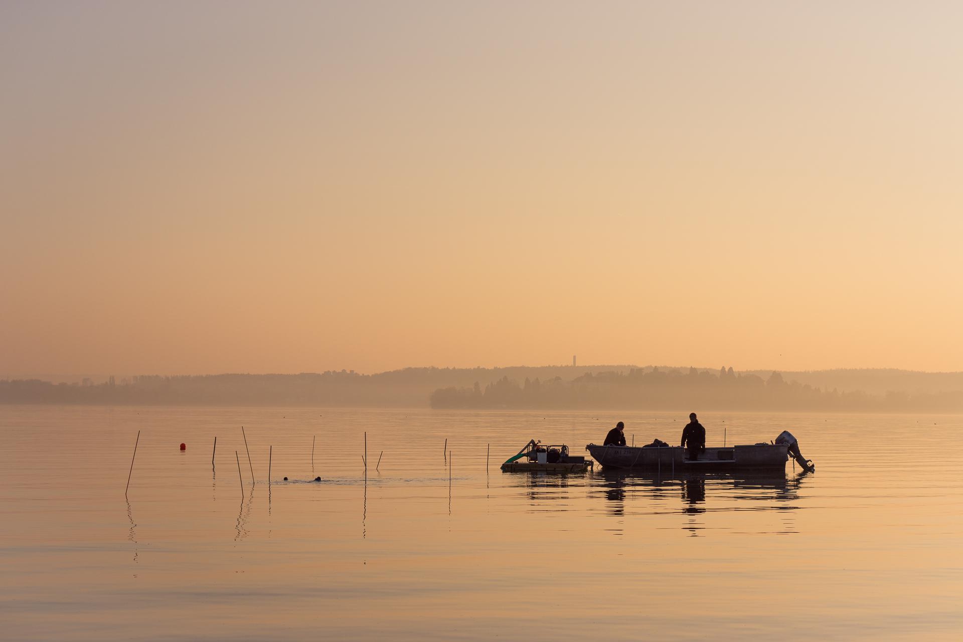 sunset divers