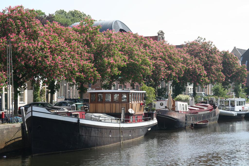 Zwolle2.jpg