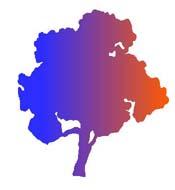 multicolor wide tree.jpg